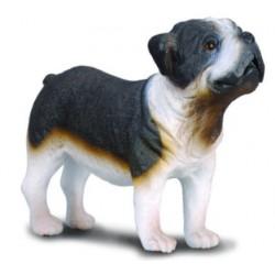 Copia Perro Raza BullDog Miniatura